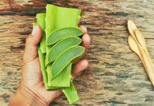 aloe vera bitkisi faydaları