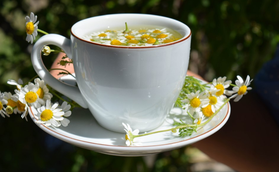papatya çayının faydaları ibrahim saraçoğlu