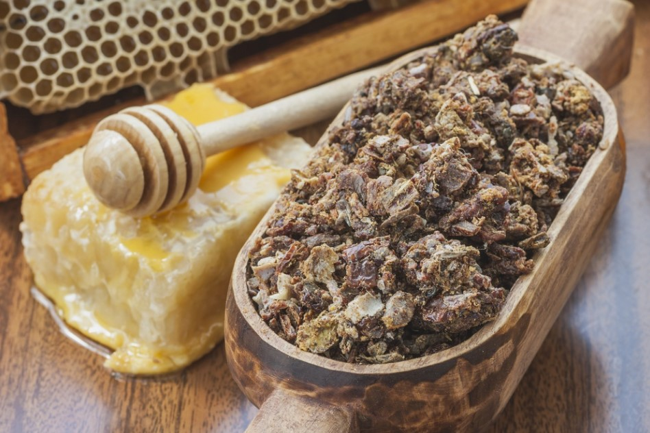 propolis arı sütü