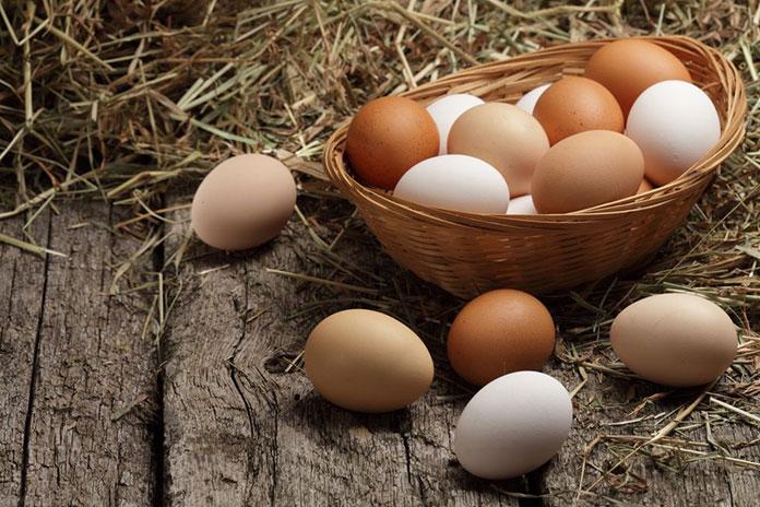 bayat yumurta