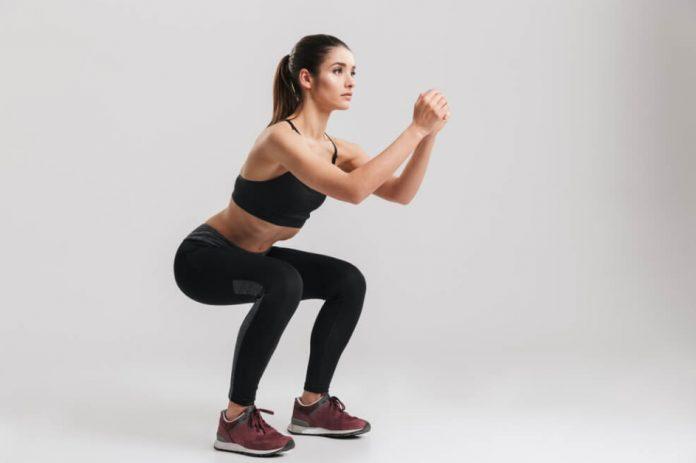 squat programı