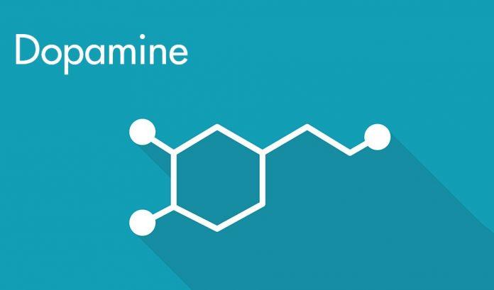 dopamin hormonu